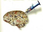 Zagrożenie, sex, pożywienie – wirus umysłu atakuje.