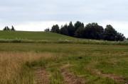 Ziemia rolna – czy warto w nią inwestować?